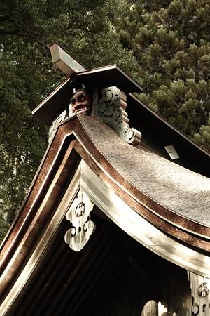 武田八幡宮 本殿の鬼-0373