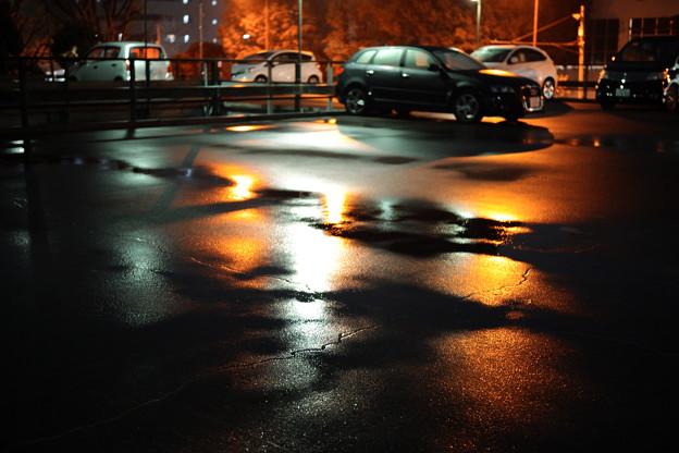 雨の彩-0488