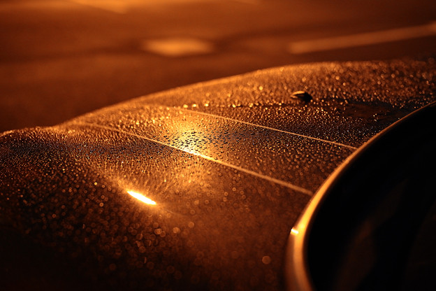 雨粒-0576