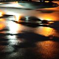 Photos: 雨の彩-0488