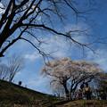 Photos: 鉢形城 ハイポーズ-1131