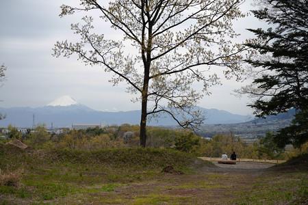 新府城の馬出しから見る富士山-1467