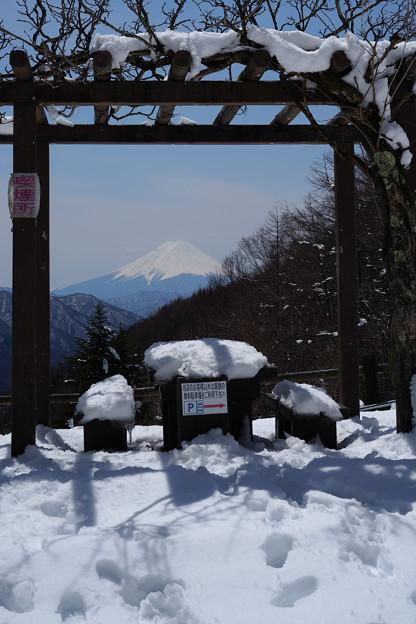 柳沢峠から見る富士山-1442