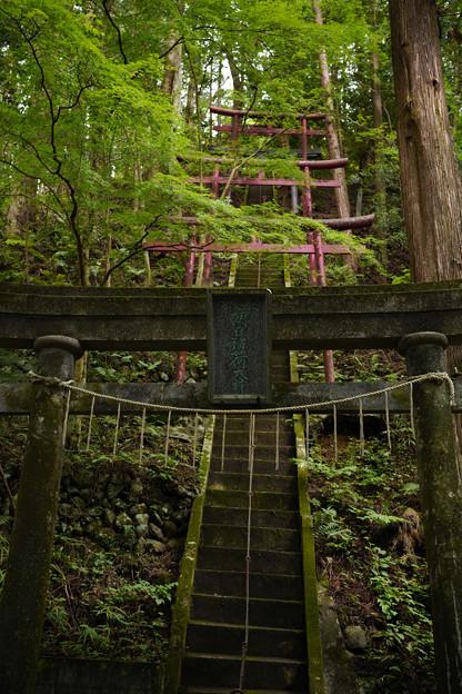 朝日稲荷神社 参道-1605