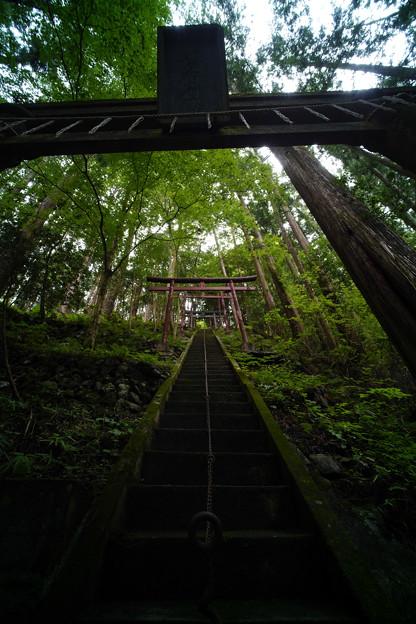 朝日稲荷神社 参道-1607