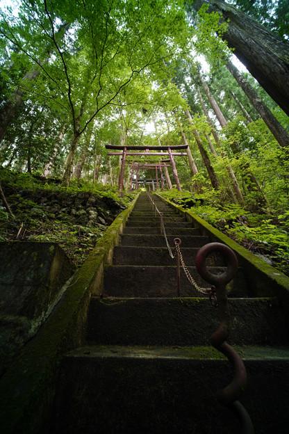 朝日稲荷神社 参道-1615