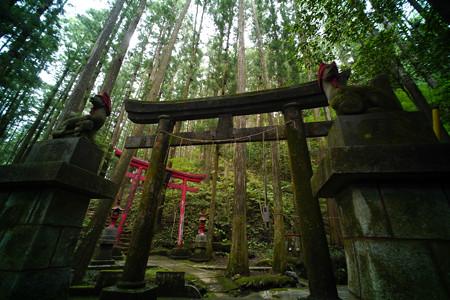 朝日稲荷神社-1609