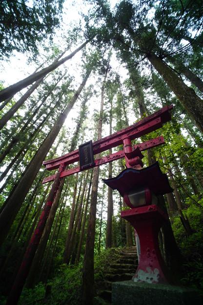 朝日稲荷神社-1613