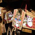 Photos: 豪徳寺 05 絵猫-1764