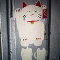 Photos: 豪徳寺の猫たち-1795