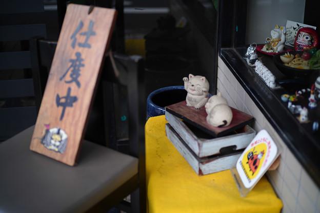Photos: 豪徳寺の猫たち-1808