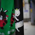Photos: 豪徳寺の猫たち-1812