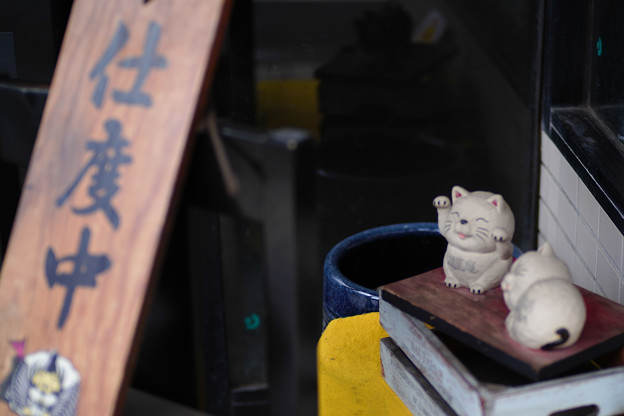 豪徳寺の猫たち~支度中~-1808