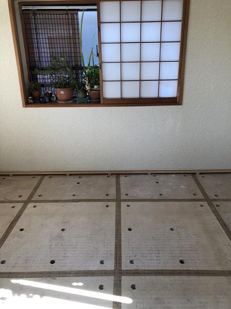 Photos: 畳表替え開始