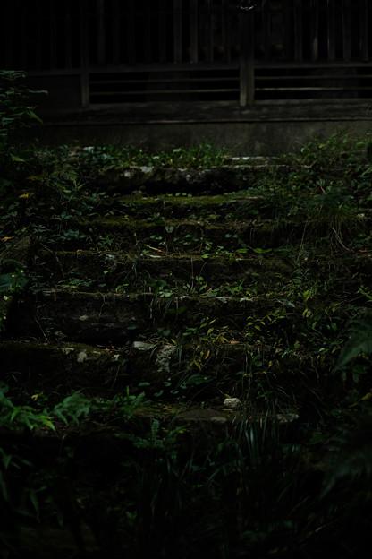 大悲願寺の階段-1536
