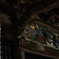 Photos: 大悲願寺 獅子-1531