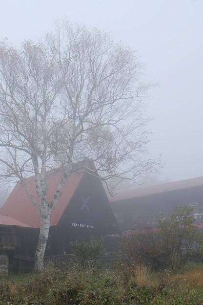 霧の清泉寮-1731