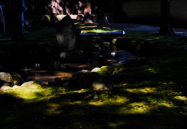 恵林寺 Green Spot-1567