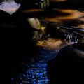 Photos: 恵林寺 池-1568
