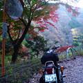 Photos: 紅葉とSR-2061