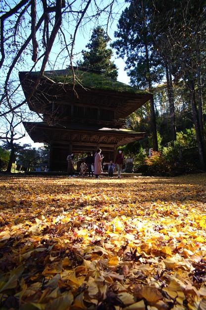広徳寺_山門と銀杏の絨毯-2020