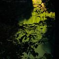 Photos: 色づく奥多摩湖-1630
