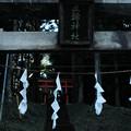 Photos: 三輪神社-1615