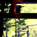 三輪神社-1628