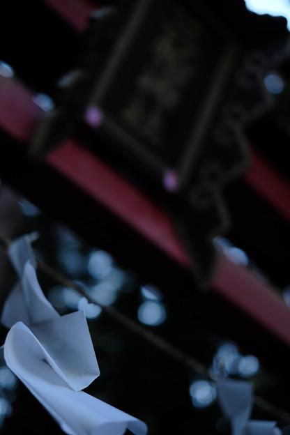 三輪神社-1617