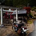 Photos: 権五郎神社-2068