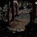 Photos: 権五郎神社-1867