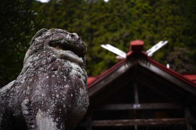 Photos: 権五郎神社-2077