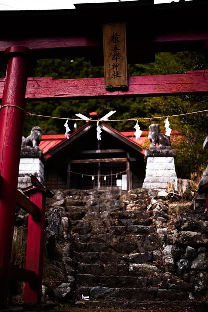 権五郎神社-2079