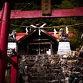 Photos: 権五郎神社-2079