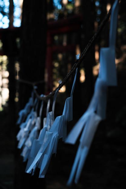 朝日稲荷神社-1920