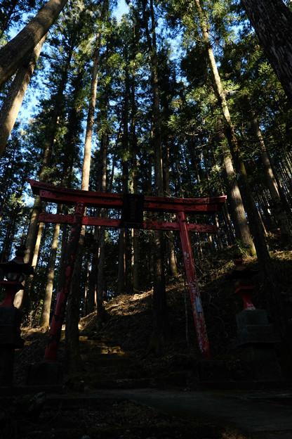 朝日稲荷神社-1906