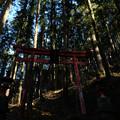 Photos: 朝日稲荷神社-1906