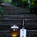 Photos: 尾道エール-3253