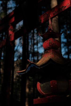 朝日稲荷神社_鉄灯籠-2023