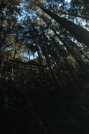 朝日稲荷神社 参道-2011