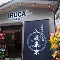 Photos: IRUCA-Tokyo-