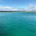 西表島 由布島