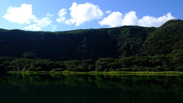 三宅島大路池
