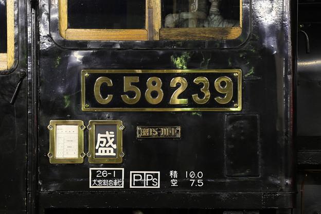 2W2A5909