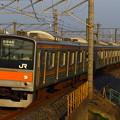 Photos: IMG_0113