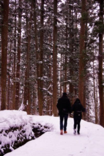 帰りの雪の林道を・・・