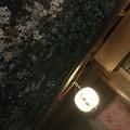 Photos: 撮って出し。。横浜三渓園も満開へ。。4月6日