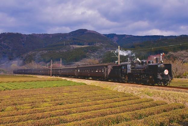 力強く走り。。大井川鐵道SL。。家山へ