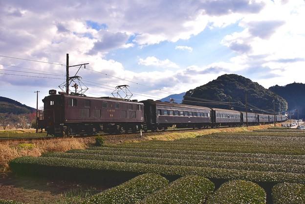 夕暮れの大井川鐵道 抜里の茶畑を走りを見送って。。