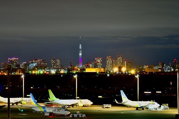 夜景の羽田空港。。スカイツリー。。